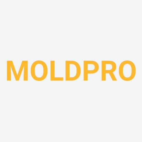 MOLDPRO